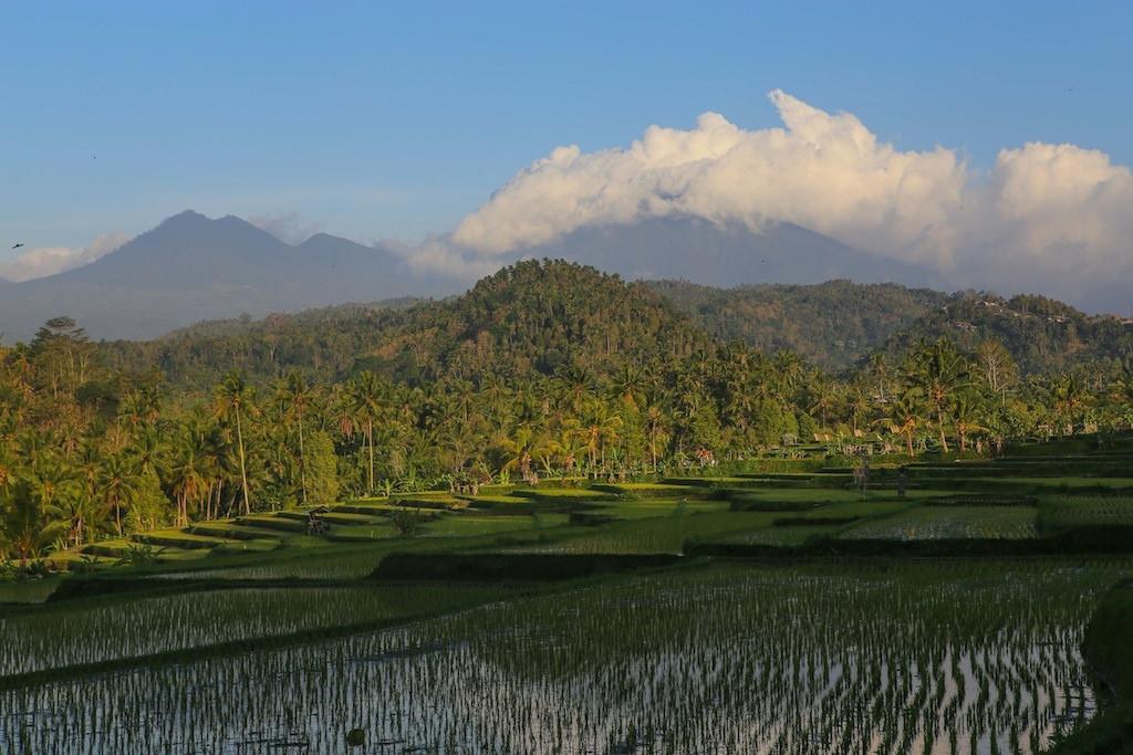 Les montagnes du centre de Bali : Lesong et Sangiyang (2093 m)