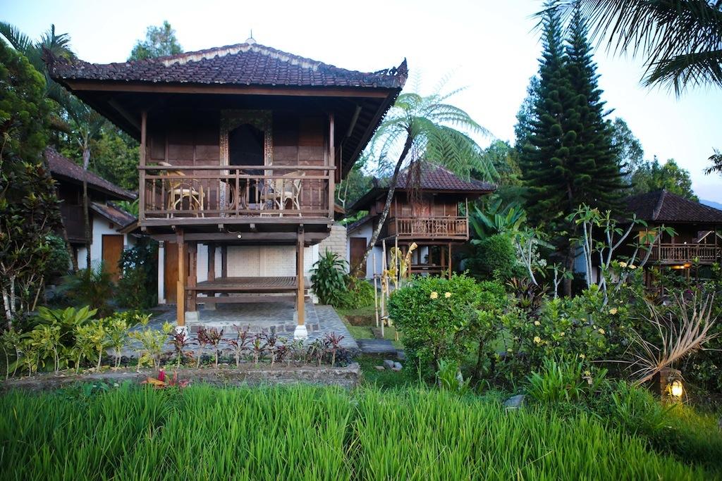 Notre hôtel à Munduk
