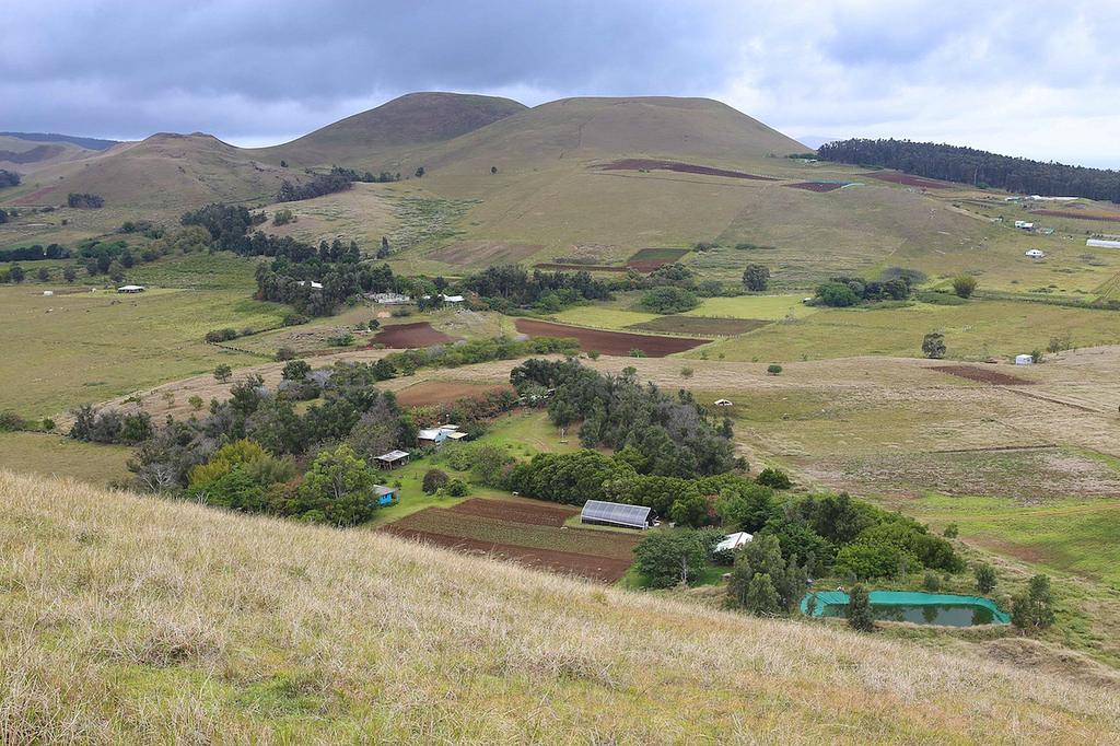 La campagne vue depuis les flancs du volcan Maunga