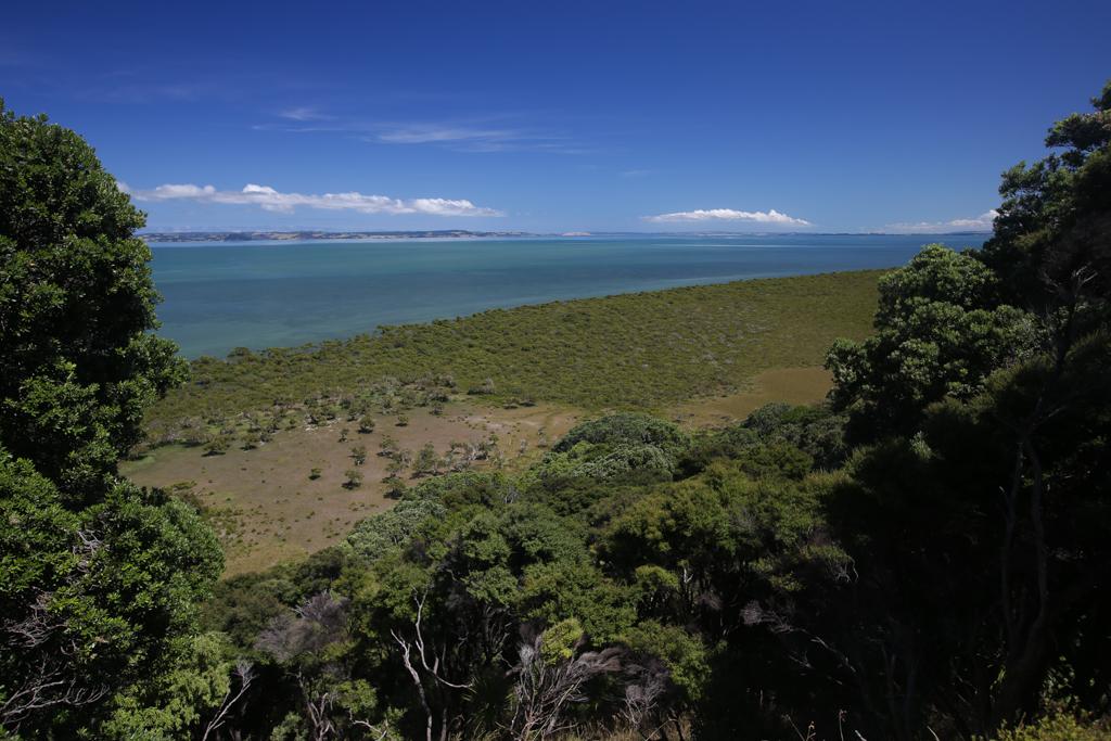 20160123 Baie de Kaipara et Muriwai-4