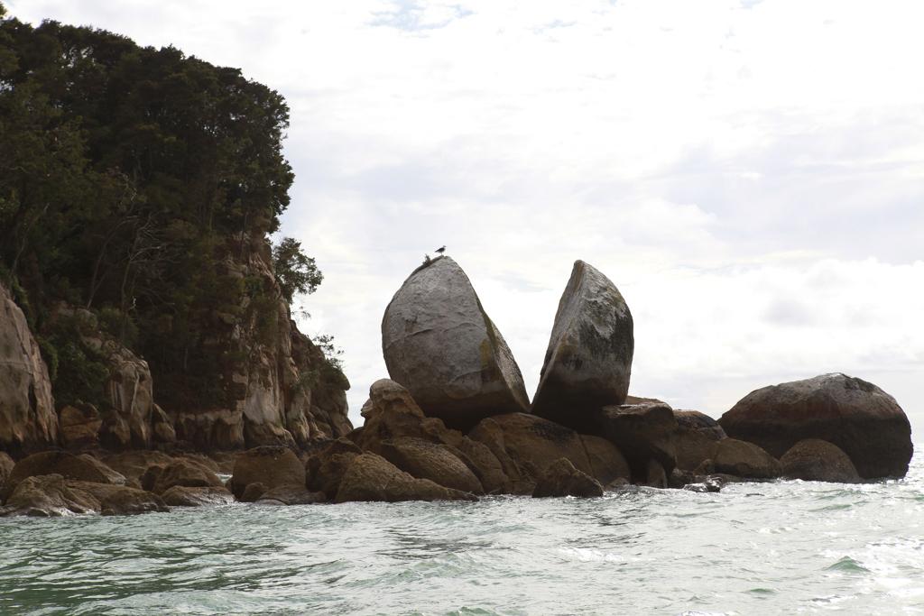 20160130 Abel Tasman NP-5