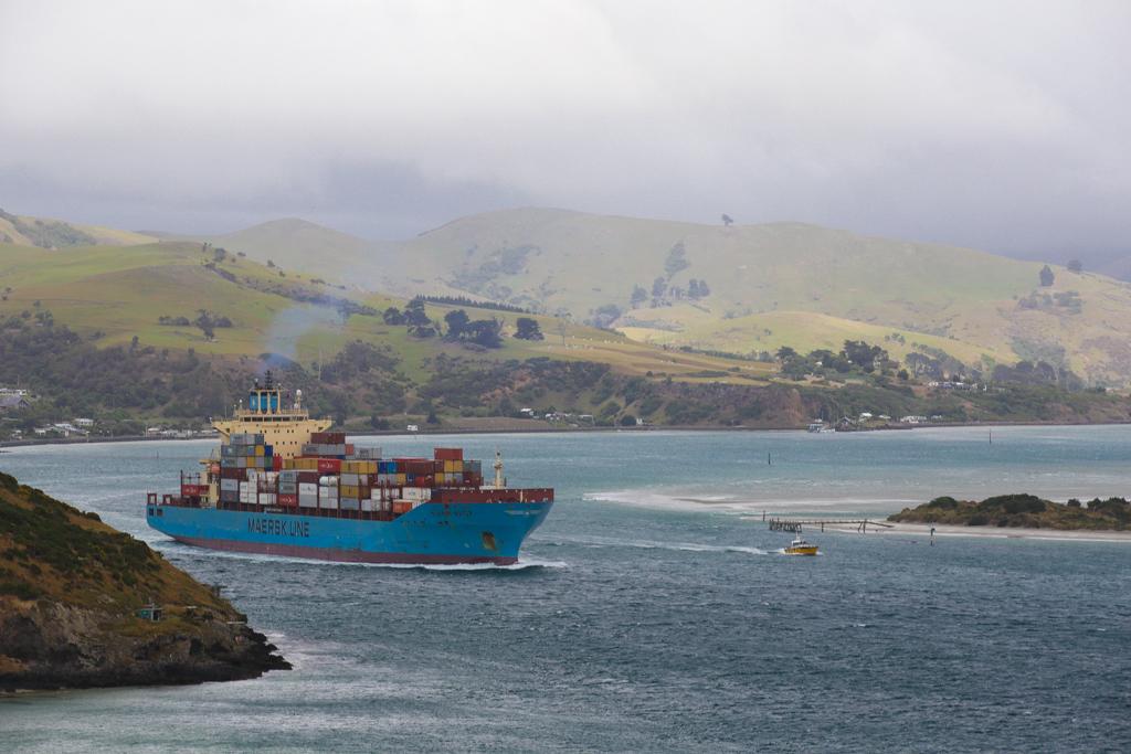 20160209 Otago Peninsula et Dunedin-11