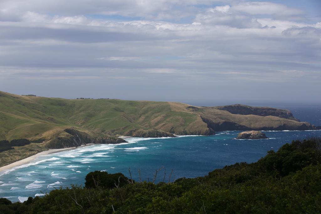20160209 Otago Peninsula et Dunedin-13