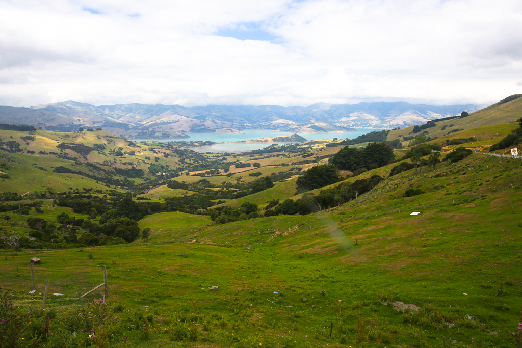 20160213 Christchurch-8