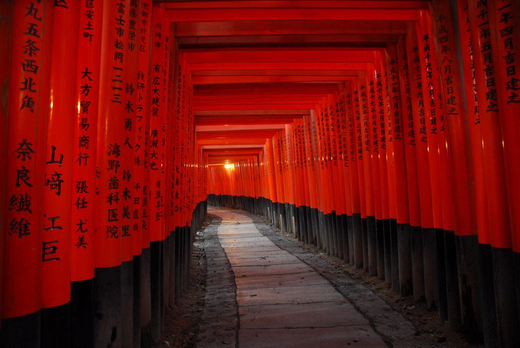 Fushimi Inari avec ses milliers de toriis. Kyoto