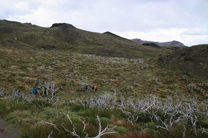 6 Novembre Patagonie Laguna Azul - Salto Grande (5 sur 8)