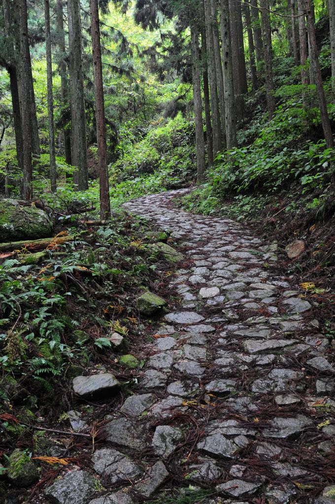 Sur le sentier de Nakasendo ancien chemin qui reliait Edo à Kyoto. Entre Magome et Tsumago