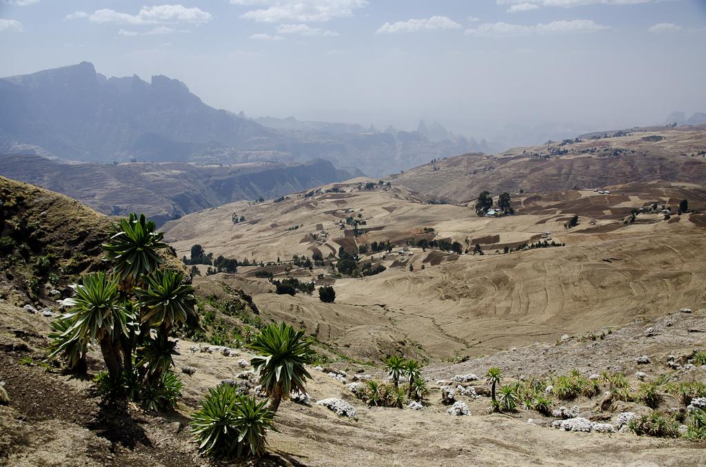 Au col d'Addis Alem, au-dessus du village de Sona