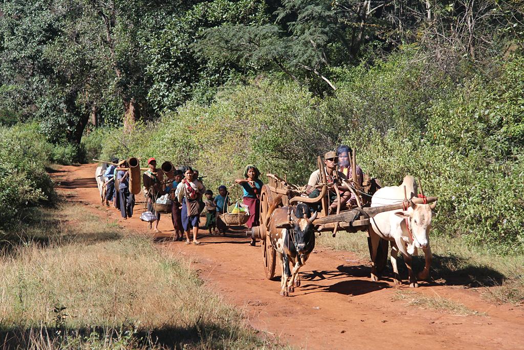 Procession agricole
