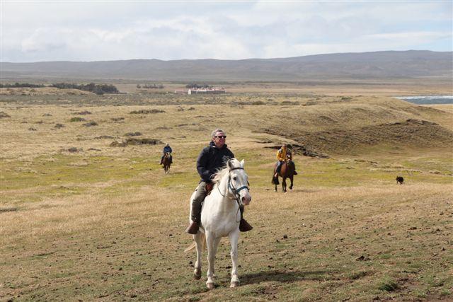 Balade à cheval le long des flots