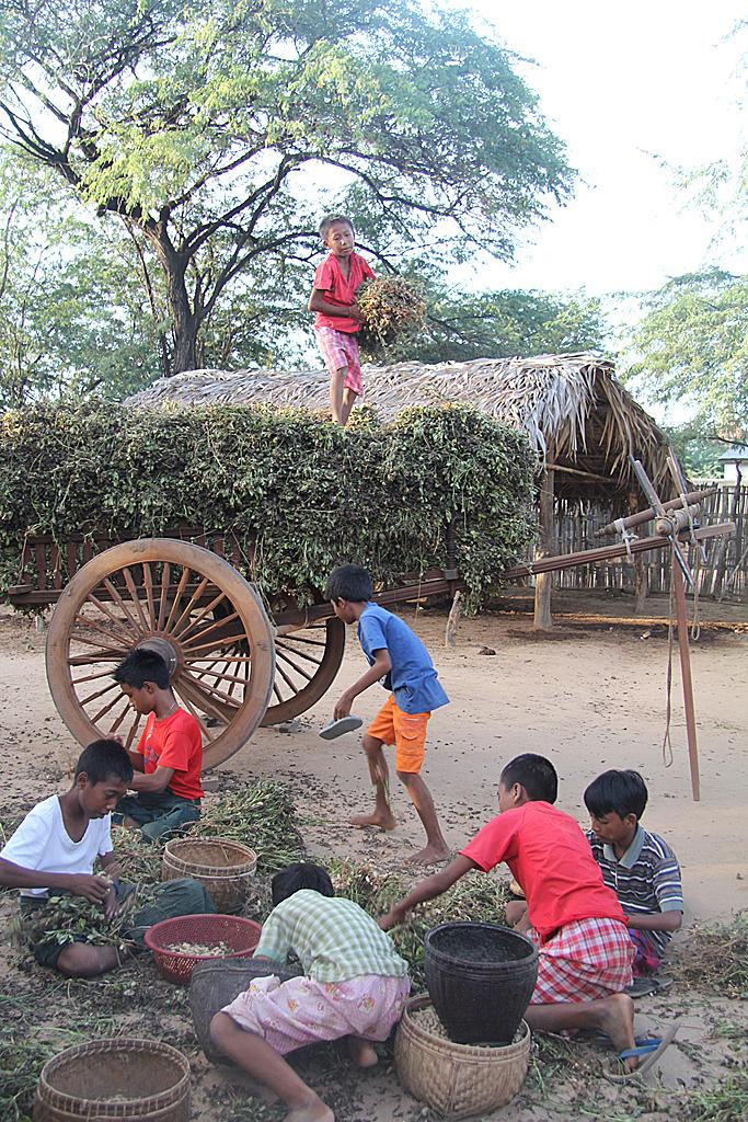 Village Minnanthu