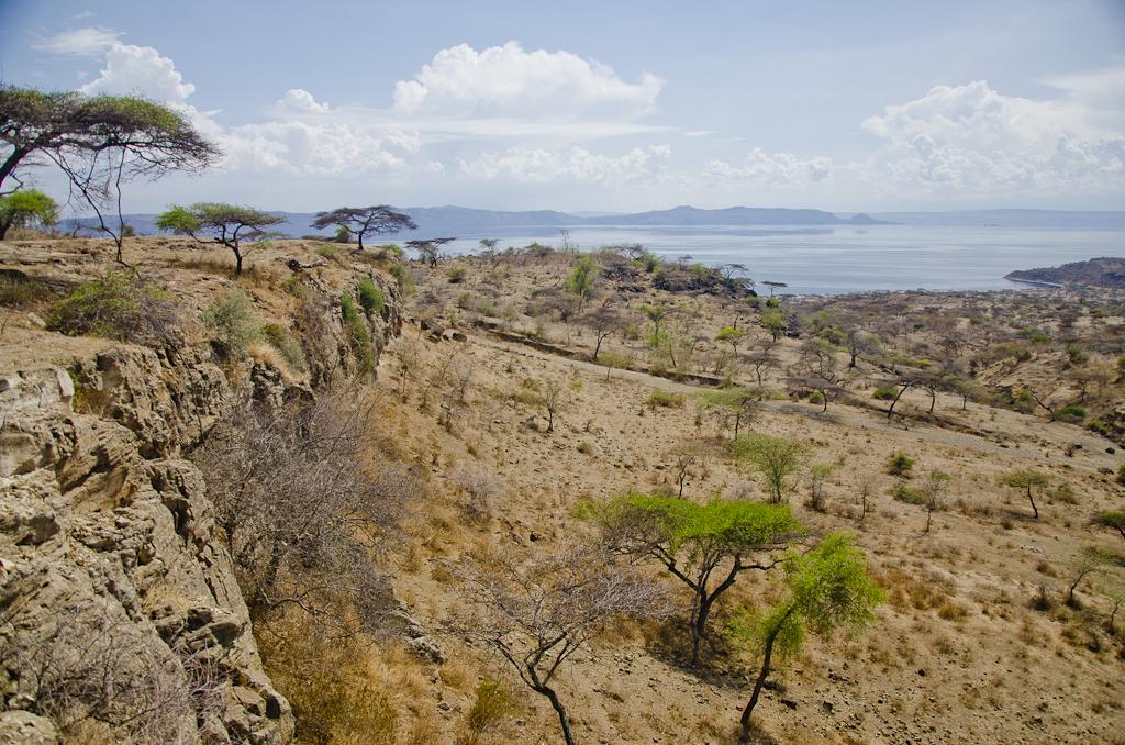 Grand Rift Africain, lac Abyata