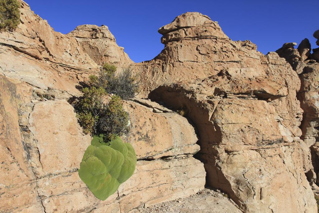 vallee-de-las-rocas-(17)