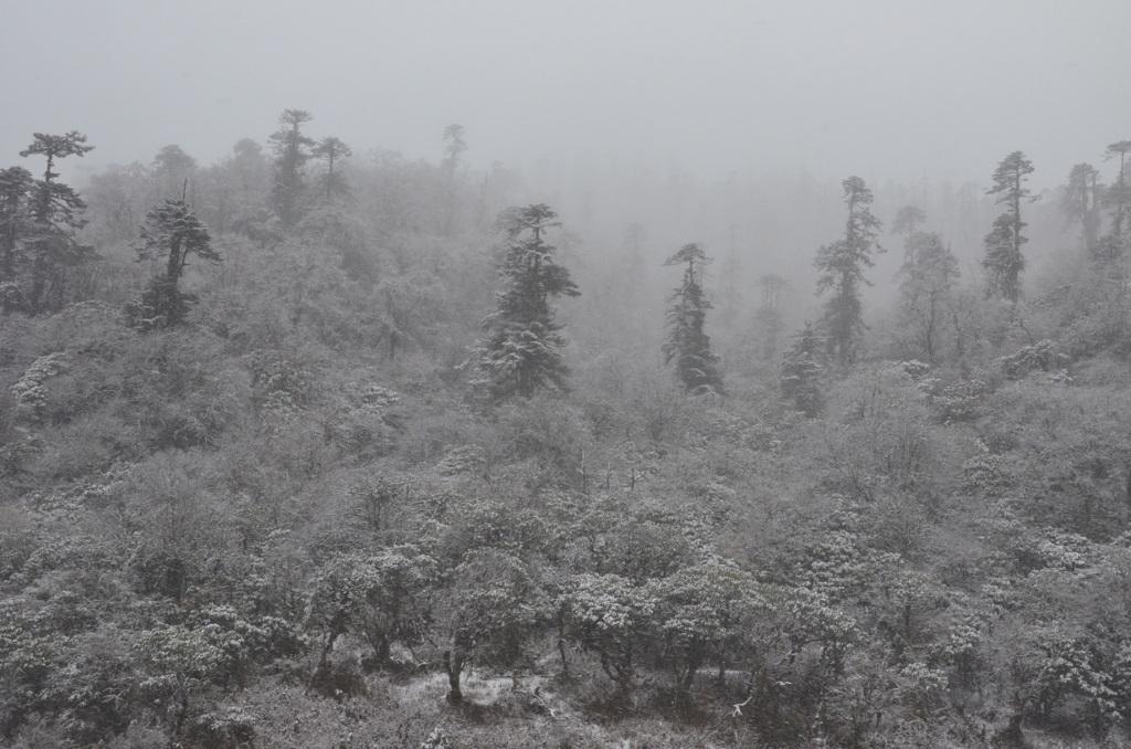 La neige est localisée au passage du col