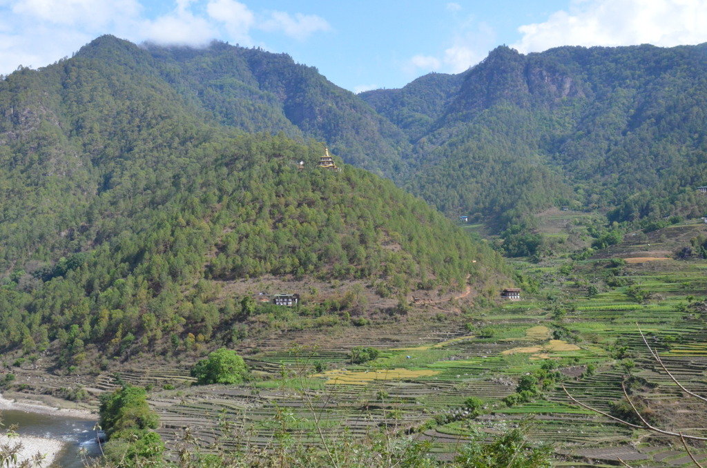 Vallée de Punakha