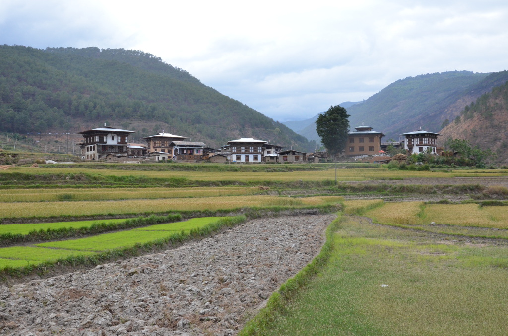 Petit village à côté de Punakha